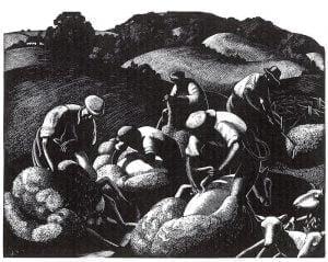 May: Sheep Shearing by Clare Leighton