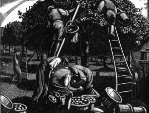 September: Apple Picking by Clare Leighton