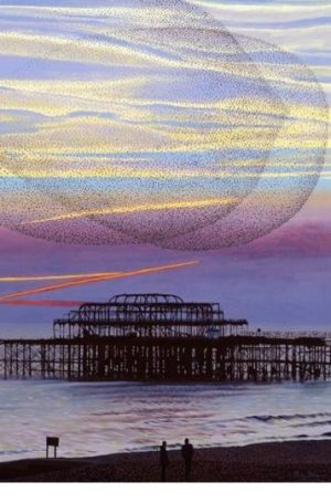The End of the Pier Show by Philip Dunn